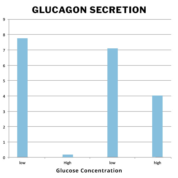 Glucagon Secretion